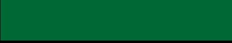 西南学院大学アメリカンフットボール部 グリーンドルフィンズ